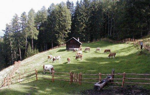 Rifugio alpino in Val Pusteria